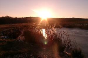 640px-Sunrise_Tharandt_Forstgarten_2005_01_05_P2