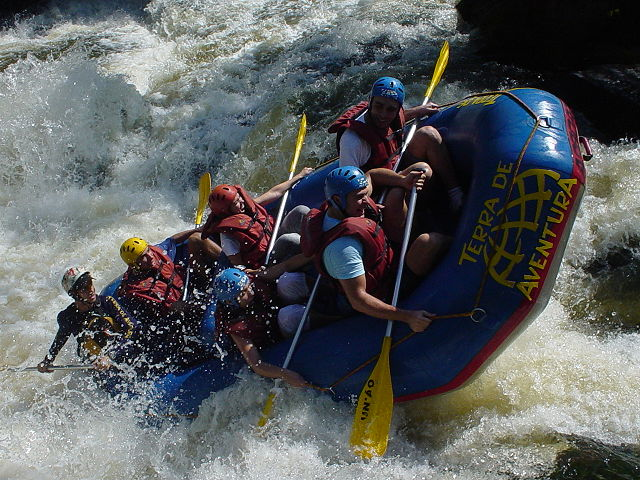 Some people rafting with great vigor.